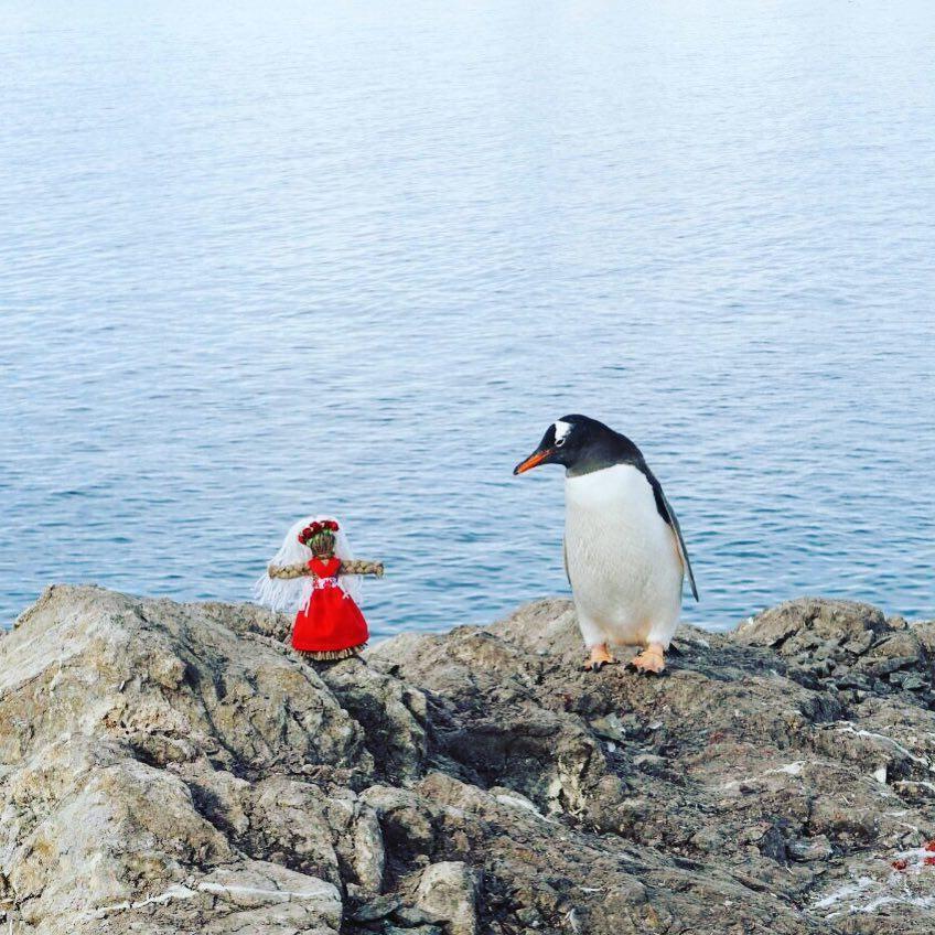"""Антарктида перед тобою: прогулятися по станції """"Академік Вернадський"""" можна через 3D-тур"""