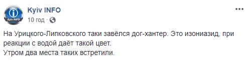 У Києві в мережі попередили про нових догхантерів