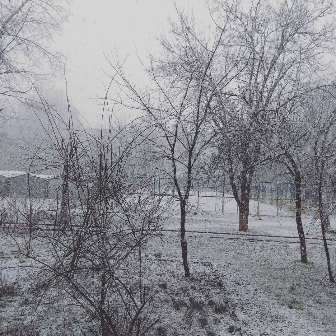 Знову зима? У мережі показали, як Україну замітає березневим снігом (фото, відео)